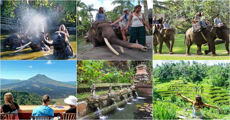 elephant Bath Bali with our Bali Cab driver and experience tour at mason elephant park